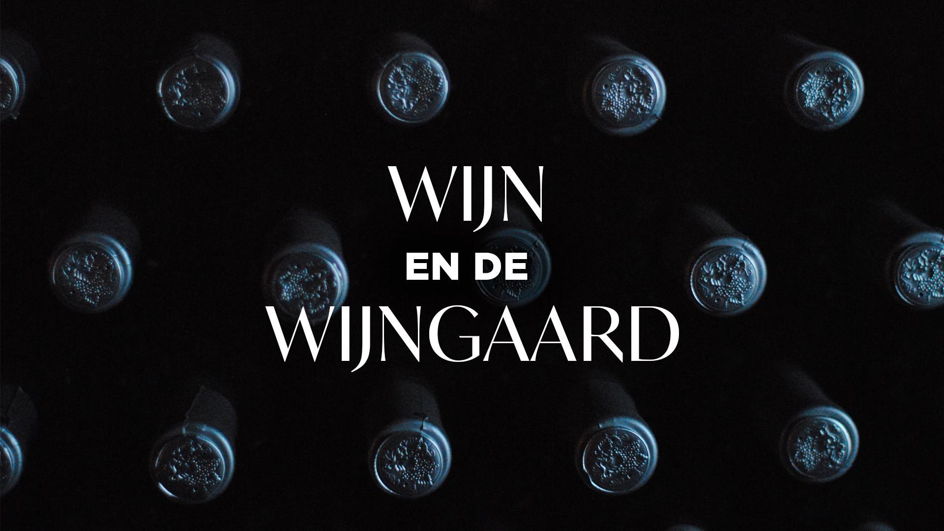 Bekijk de preek van David Schijve over Wijn en de Wijngaard